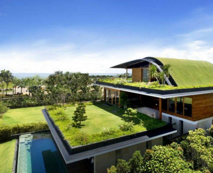 Roof garden: un giardino sul tetto? Ecco la legge!