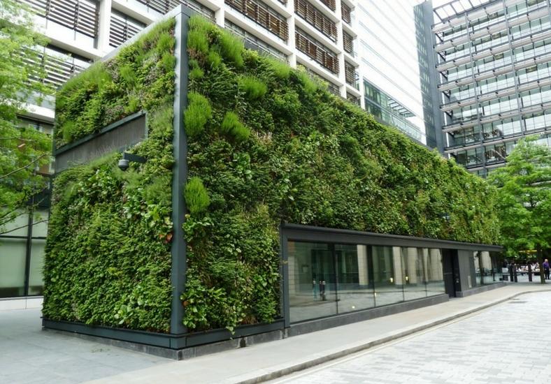Esempio di bioarchitettura con green walls