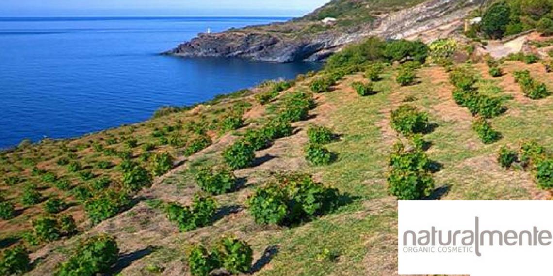 Naturalmente Organic Cosmetic fa più bella Pantelleria