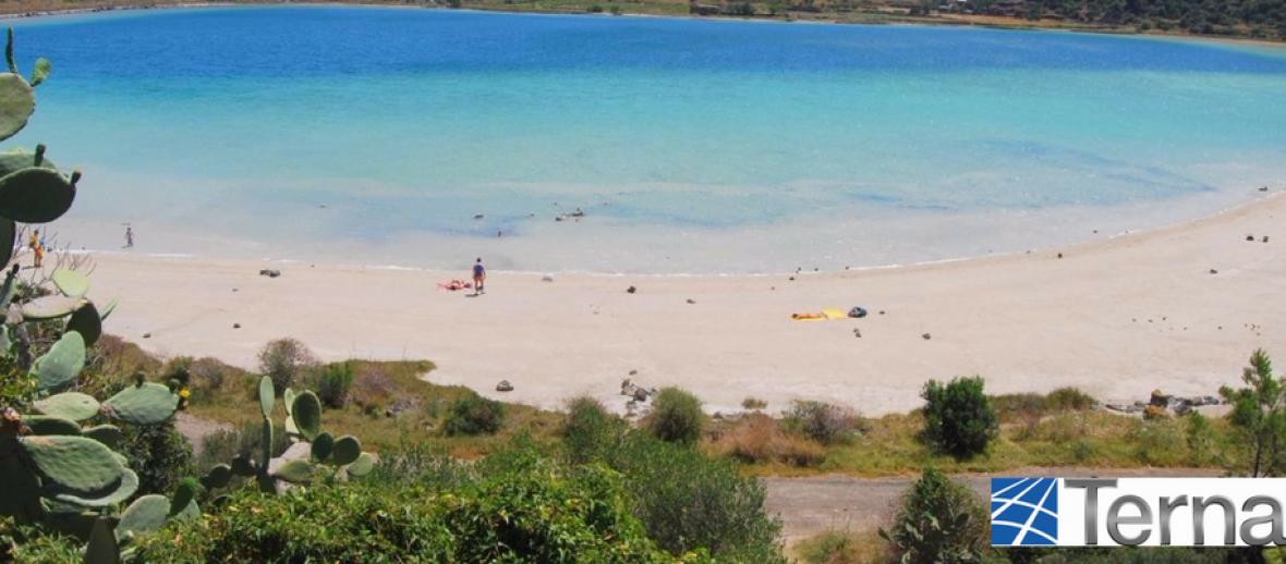Con Terna, Pantelleria ha più energia per il futuro: si riparte dagli alberi
