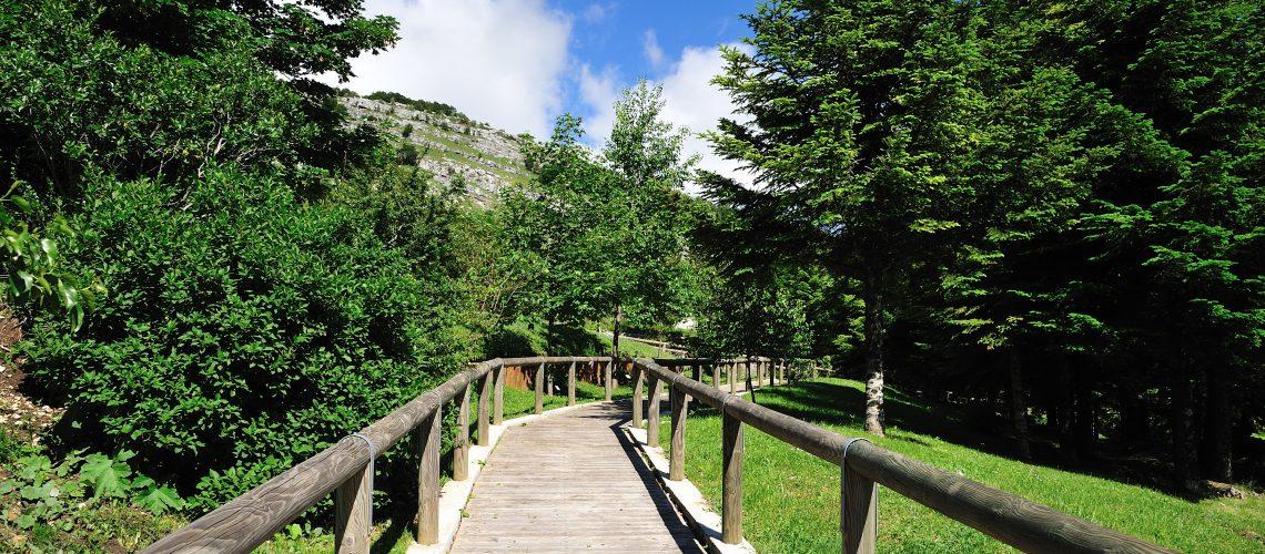 Giardino della Flora Appenninica: educazione ambientale e turismo naturalistico si incontrano