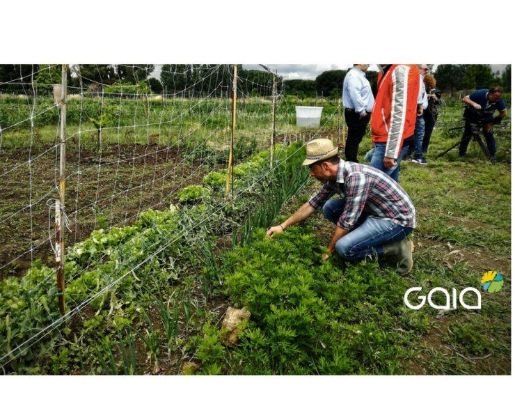 L'energia di Gaia per gli orti di Afragola