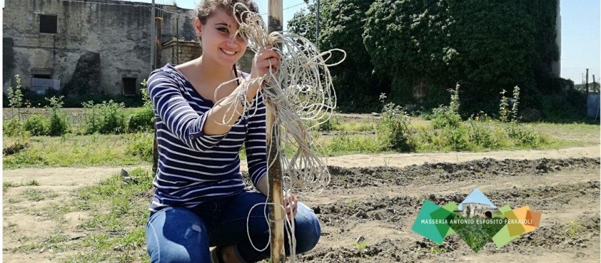 I 100 Orti della Masseria: il crowdfunding al fianco della legalità
