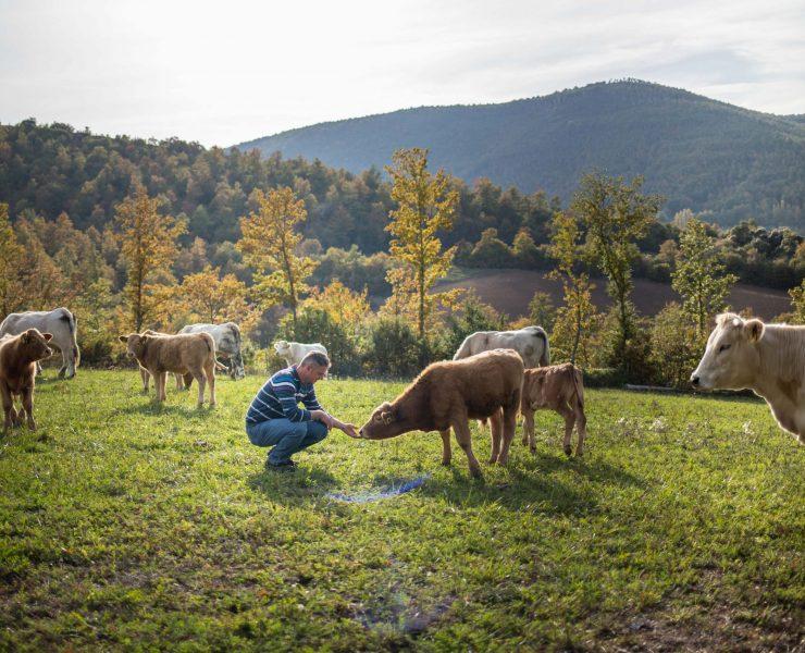 """""""Alleva la speranza"""": ancora insieme per il Centro Italia"""
