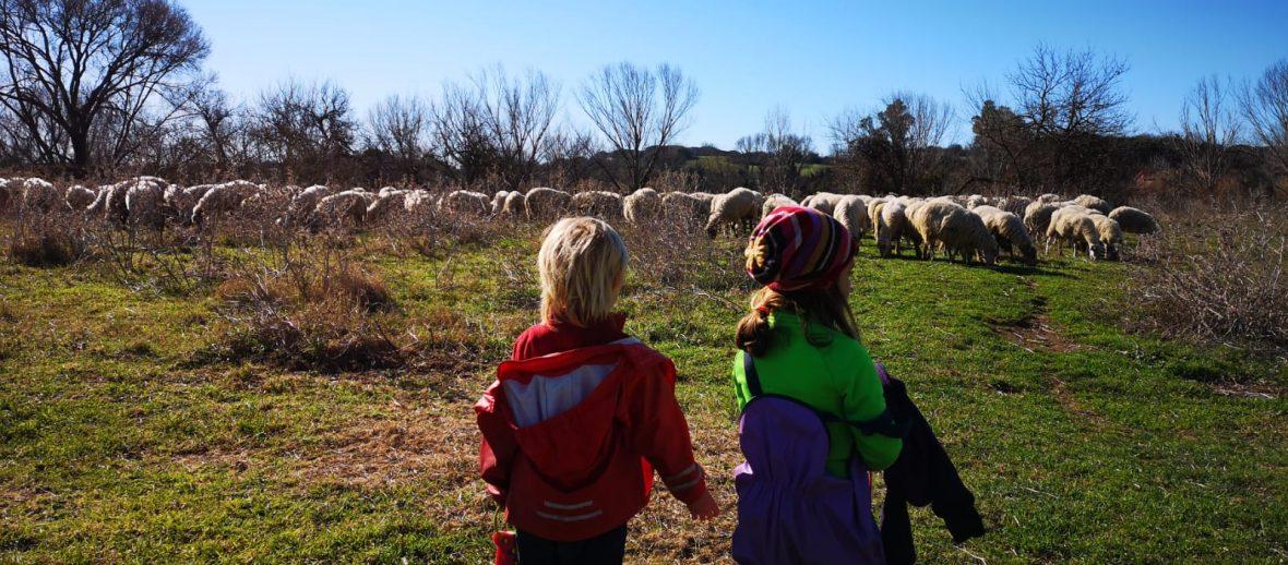 Nel Bosco Caffarella i bambini si riprendono il tempo